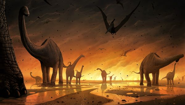 did-an-asteroid-doom-the-dinosaurs_64137_600x450